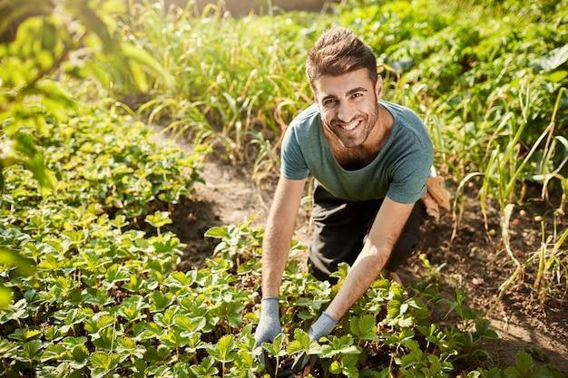 파란색 티셔츠에 젊은 매력적인 수염 히스패닉 남성 정원사의 초상화, 카메라에 미소, n 정원 작업, 수확 따기, 아침 야외 지출