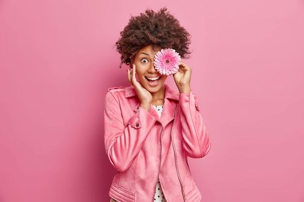 Портрет молодой веселой женщины держит розовый цветок герберы перед глазами трогает лицо, нежно чувствует себя очень счастливым, носит стильную куртку позы на розовой стене