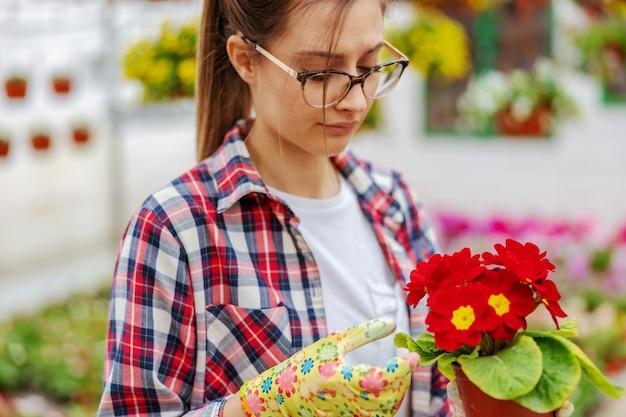 花とポットを保持し、温室に立っている間それを世話する若い起業家の肖像画。