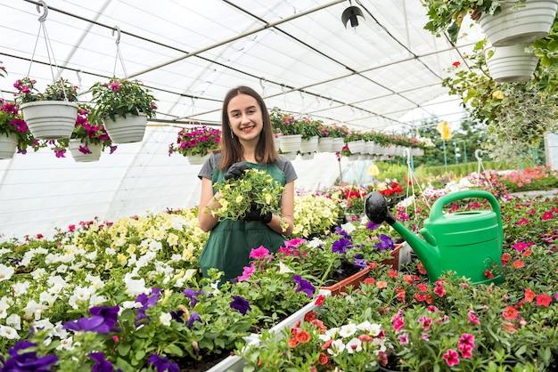 温室の鉢植えの植物を扱うエプロンの若い女性の庭師の肖像画