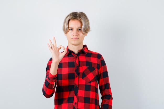 체크 셔츠에 확인 제스처를 보이고 만족스러운 전면 보기를 보여주는 어린 10대 소년의 초상화