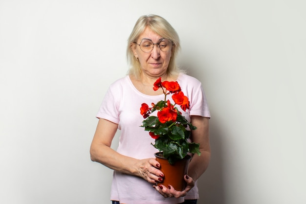 Portrait of an old friendly woman in a casual t-shirt and glasses holds a potted flower and looks at it on an isolated light wall. emotional face. the concept of plant care, home garden