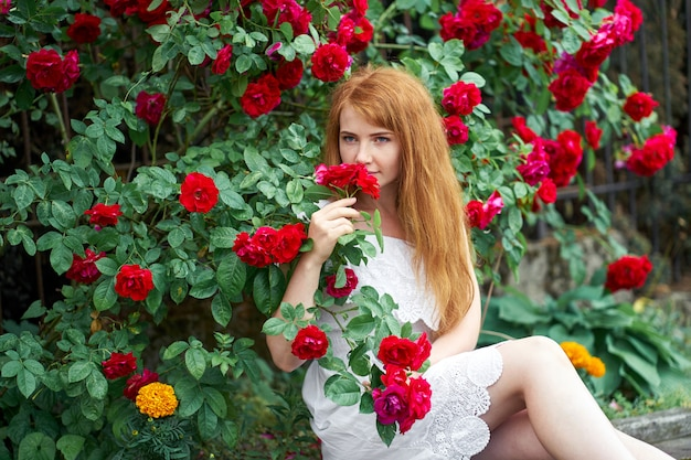 Portrait of a pretty redhead girl dressed in a white light dress, blooming roses. outdoor.