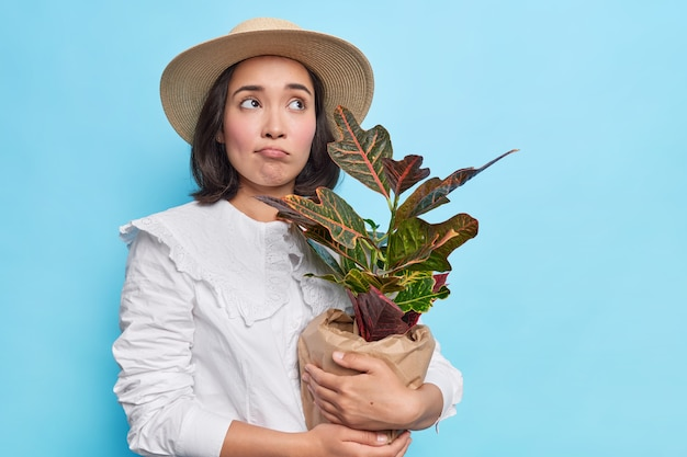 Portrait of sad asian woman with short dark hair holds potted houseplant buys domestic flower for present wears stylish white blouse and hat isolated over blue wall
