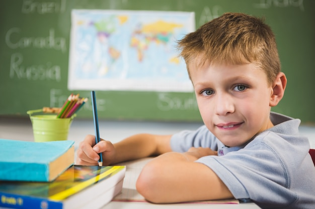 Portrait of schoolboy doing homework in classroom