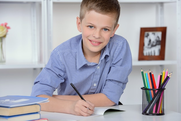 Portrait of schoolboy, making lessons at home.