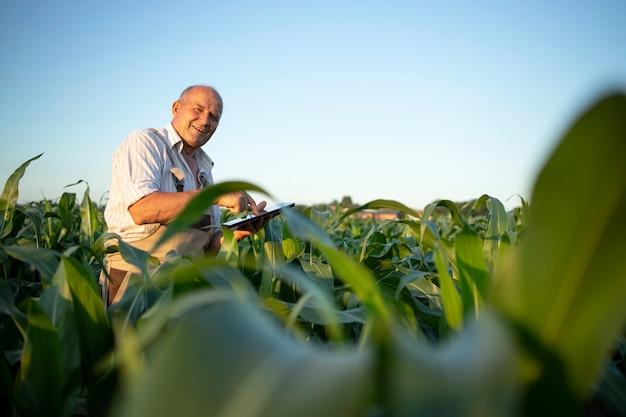 Portrait of senior hardworking farmer agronomist in corn field checking crops before harvest