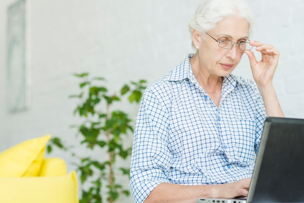 Portrait of a senior woman looking at laptop