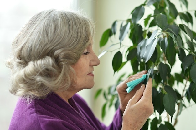Portrait of a senior woman with plant  at home