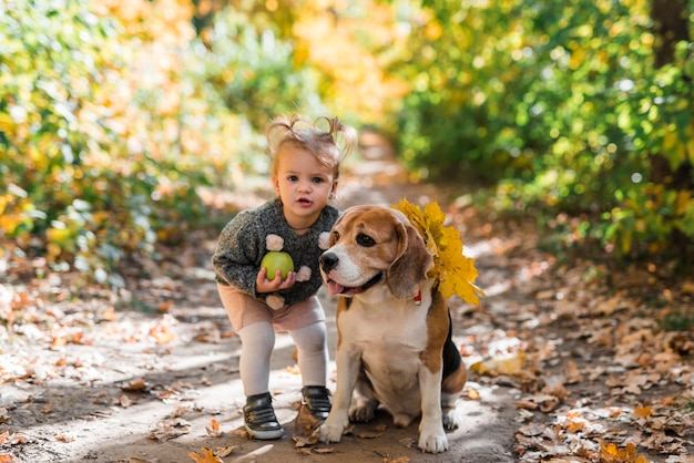 Portrait of a small girl holding ball standing near beagle dog in forest