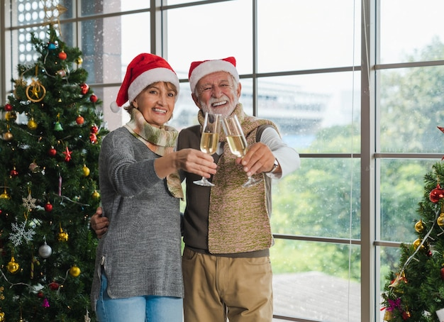 Portrait of smiling handsome senior couple embracing, holding and cheers champagne flute together next to decorated christmas tree in cozy living room with window in winter. merry christmas.