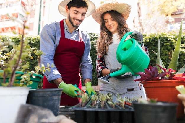 Portrait of smiling young female and male gardener taking care of seedlings in crate