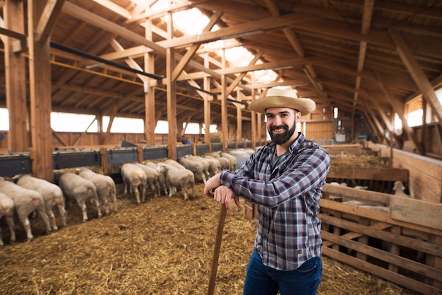 Portrait of successful farmer cattleman proudly standing in sheep barn