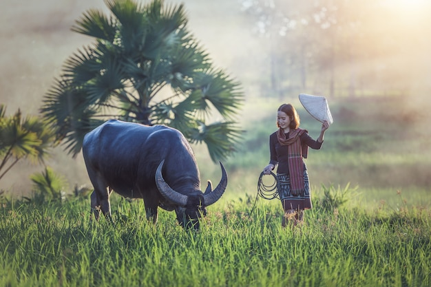 Portrait of thai young woman farmer with buffalo, thailand countryside