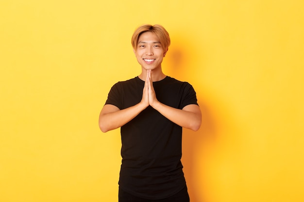 Portrait of thankful smiling asian blond guy holding hands together in pray, standing yellow wall