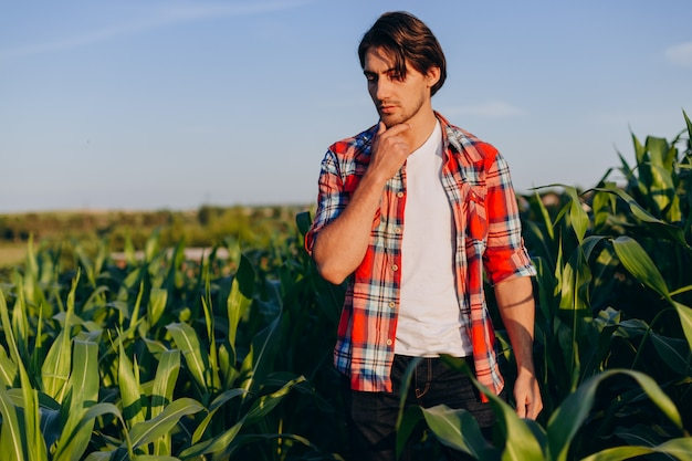 Portrait of thoughtfully agronomist standing in a corn field and touching his chin.