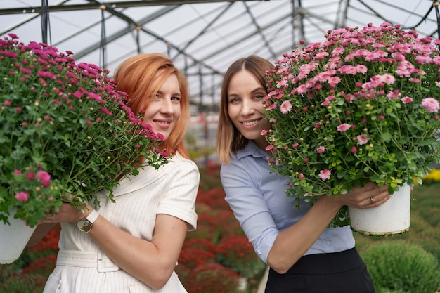 Portrait two adorable ladies posing with a bunches of pink chrysanthemums in a beautiful blooming green house with glass roof.