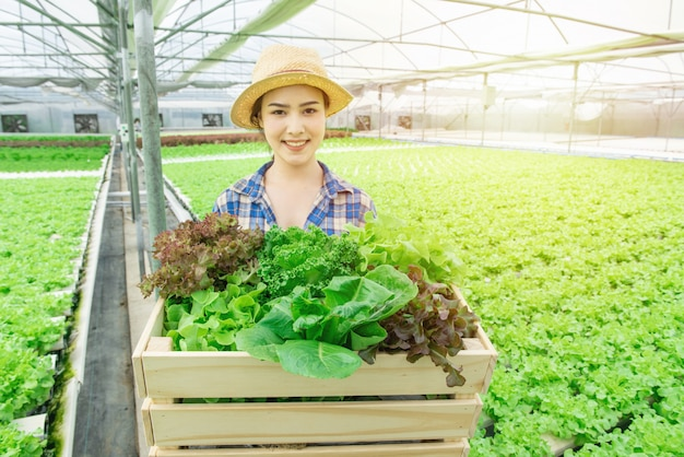 Portrait of young attractive beautiful asian woman harvesting fresh vegetable salad from her hydroponics farm in greenhouse hand hold wooden basket and smile, small business entrepreneur concept