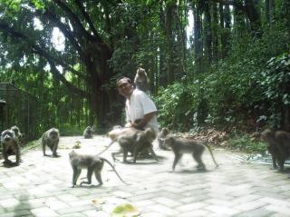 Позирует с обезьянами