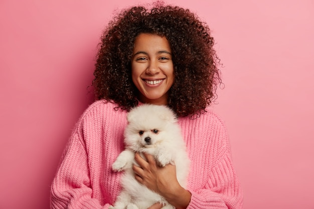 Positive african american woman poses with fluffy spitz on hands, petting dog, has glad expression to adopt domestic animal isolated over pink background.