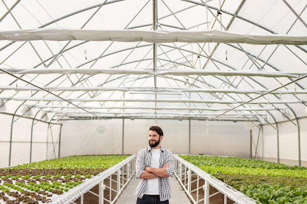 Positive bearded man crossing arms and looking away while standing near hydroponic tables in modern hothouse