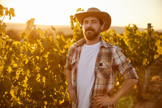 Positive confident adult bearded male farmer in checkered shirt and straw hat looking at camera while standing in middle of vineyard in summer day