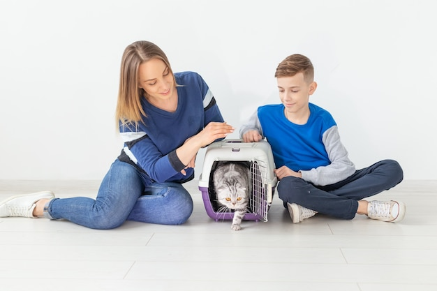 Positive good-looking mother and son launch their beautiful gray scottish fold cat into their new apartment after the move