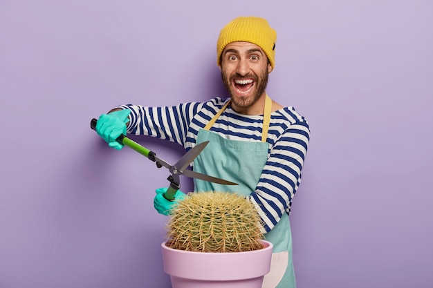 Positive male gardener trimms cactus with secateurs or clippers, dressed in workwear, wears protective gloves, pruns plant at home, stands against purple background.
