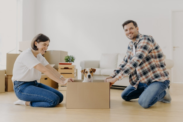 Positive millennial couple play with favourite pet, have fun during moving in new apartment