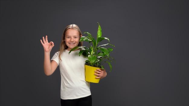 ポジティブな十代の少女は、観葉植物、黄色い鉢に緑の花を持って大丈夫なジェスチャーを示しています。灰色で隔離