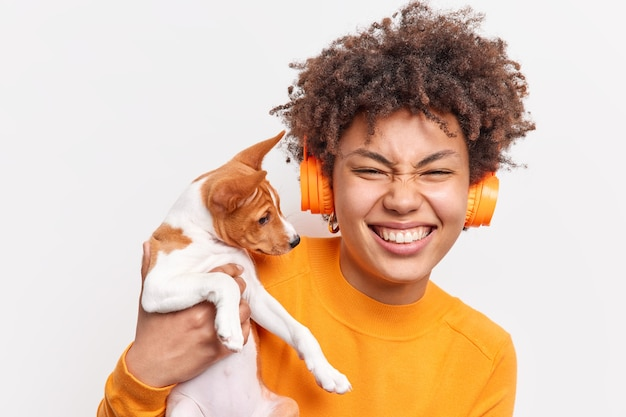 Positive young afro american female enjoys cool company of favorite dog happy to get small pedigree puppy as present smiles with teeth wears stereo headphones on ears isolated over white wall.