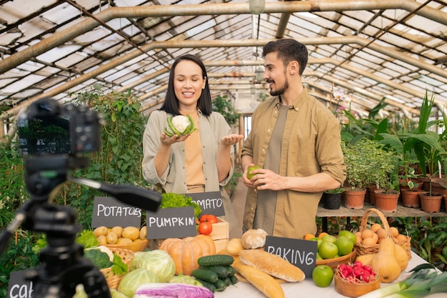 Positive young couple of farmers discussing benefits of cauliflower while shooting video about vegetables in greenhouse