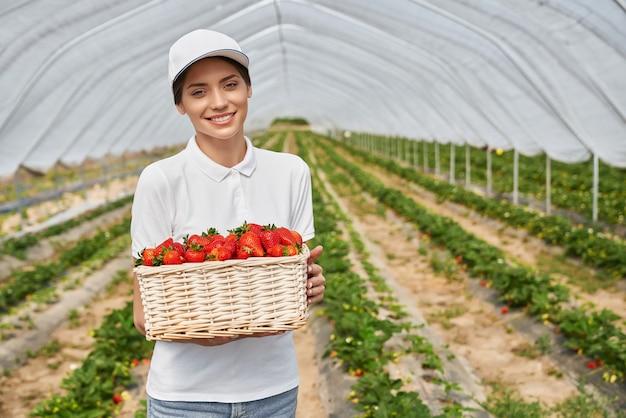 Положительная молодая женщина, держащая плетеную корзину со спелыми клубниками, стоя в теплице. женщина-фермер в белой кепке улыбается и.