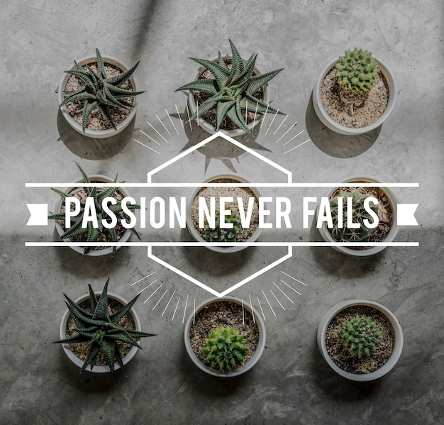 ポジティブブレイク情熱は決して失敗しない瞬間