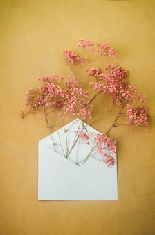 Postal envelope with pink gypsophila flowers inside
