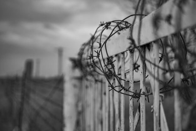 有刺鉄線のフェンス、戦争、postapocalypse