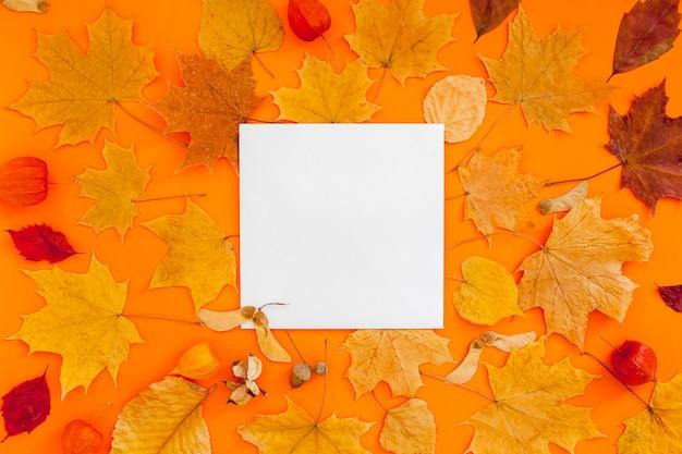 엽서 모형 및 오렌지 배경에 마른 나뭇잎