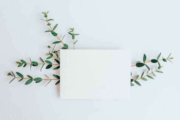 식물에 엽서