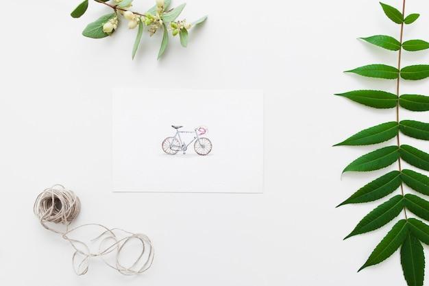 自転車と植物標本のポストカード