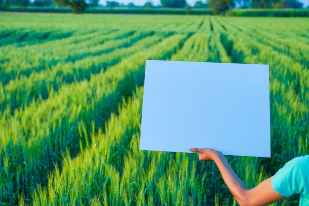 Poster template background of agriculture background