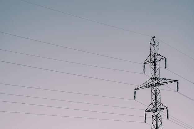Столбы с проводами высокого напряжения на фоне неба в солнечном свете. monochrome изображение фона много проводов в небе с космосом экземпляра. линии электропередач в блеклых тонах.