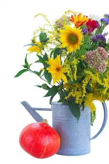 Posy of mixed autumn flowers in watering can with pumpkin  isolated on white background