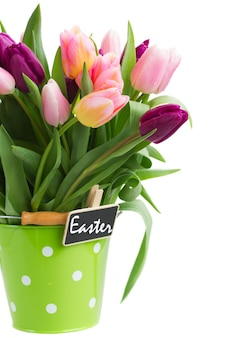 Pot of spring tulips isolated on white