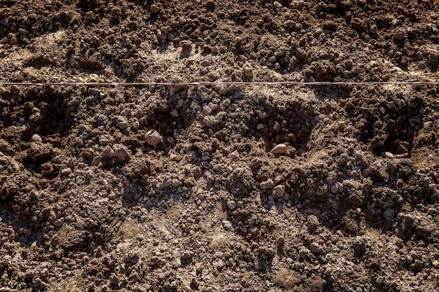 植え付け用の穴を掘ったジャガイモ。伝統的な春の農作業。庭と農業。閉じる。