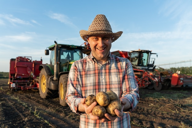 Potatoes in the hands of a man on the background of a tractor