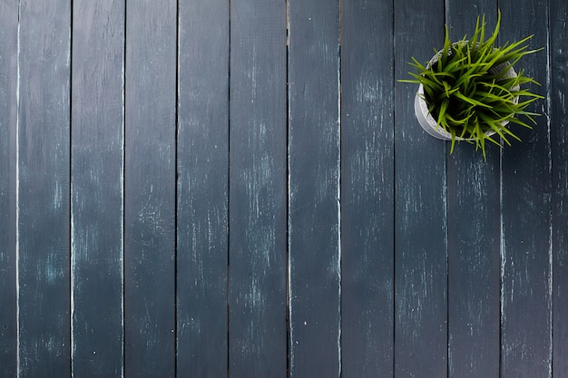 Potted grass flower over wooden table background with copy space
