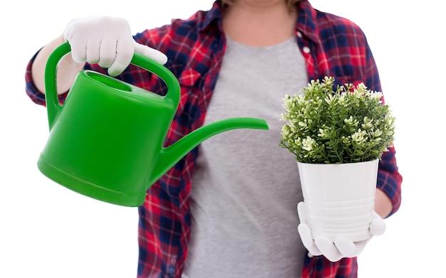 鉢植えの植物と白い背景で隔離の女性の手でじょうろ
