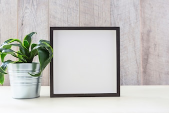 Potted plant near the photo frame on white table