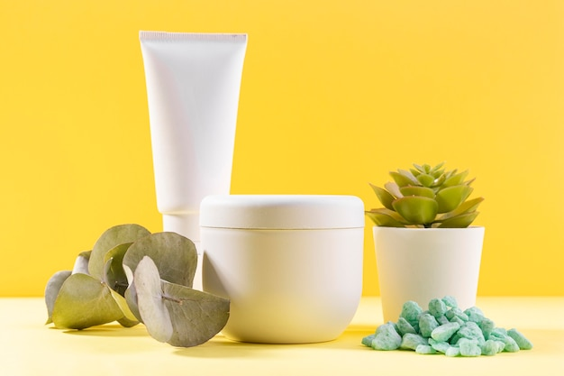 Pianta in vaso con contenitori cosmetici