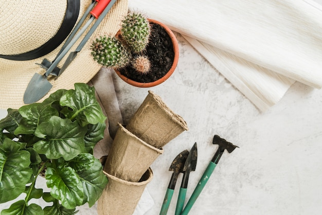 Potted plants; peat pots; gardening tools; straw hat and napkin on concrete backdrop